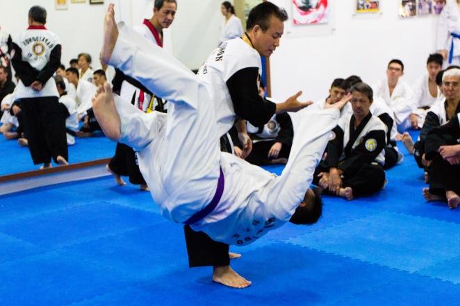 Hapkido World Seminar 2014_Tsai Min Yi (130)