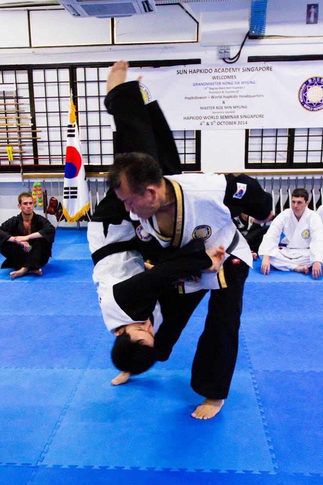 Hapkido World Seminar 2014_Tsai Min Yi (147)