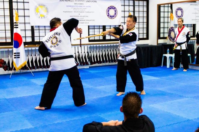 Hapkido World Seminar 2014_Tsai Min Yi (154)
