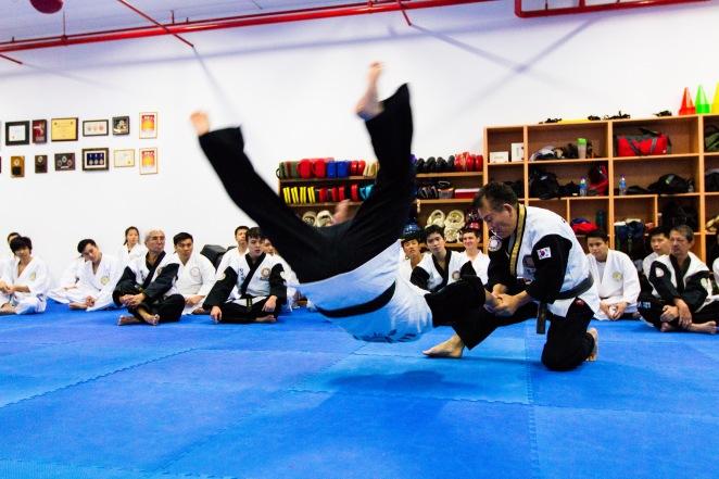 Hapkido World Seminar 2014_Tsai Min Yi (55)