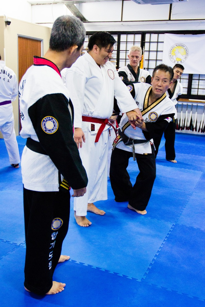 Hapkido World Semnar 2014_Part 2_Tsai Min Yi (42)