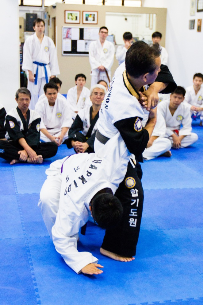 Hapkido World Semnar 2014_Part 2_Tsai Min Yi (55)